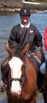 Newman Equine Veterinarian In Cocoa Fl Us Our Team